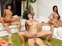 Europäische Orgie