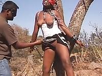 Maskierte schwarze Küken wird zum Baum und Eroticd mit Sex-Spielzeug gebunden
