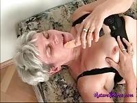 Cornea nonna brama gallo
