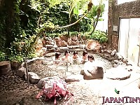 Outdoor bathing Japanese ladies enjoying cock