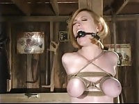 Lovely harlot featuring hot BDSM video